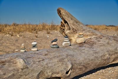 DriftwoodAndStonesStackedUp_20210321_850_8999