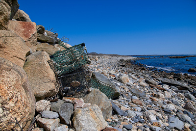 LobsterTrapsAshore_20210404_850_9704