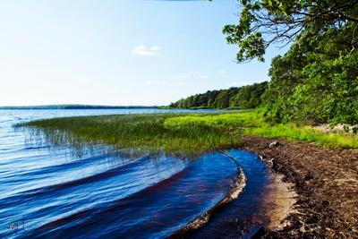 Gentle Waves On Worden Pond_20210617_850_4978