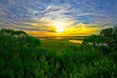 Framed Sunset At Succotash Marsh_20210817_850_8906