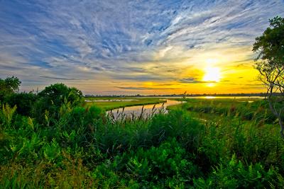 Impasto Skies At Succotash Marsh_20210817_850_8909