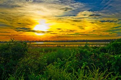 The Sun Melts The Sky Over Succotash Marsh_20210817_850_8923