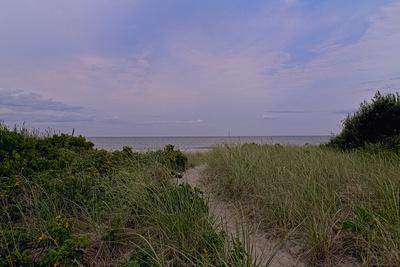 Beach Path 20210722 850_8080