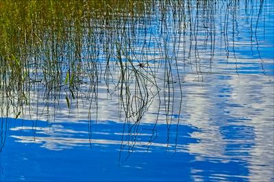 Reflections In Worden Pond 20210918 850_0480