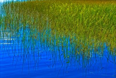 Reflective Worden Pond 20210918 850_0486